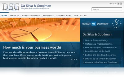 DaSilva and Goodman Website Display